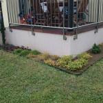 cuvar kuca sadnja