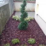 postavljanje mokre kore