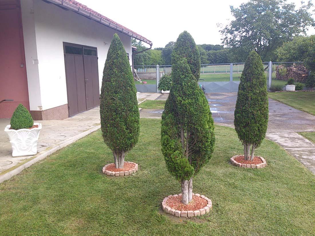 kreiranje i održavanje zelenih površina