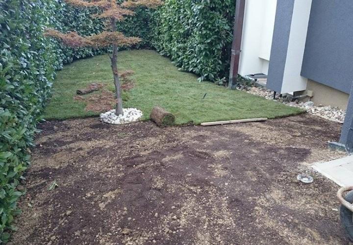 postavljanje travnog tepiha